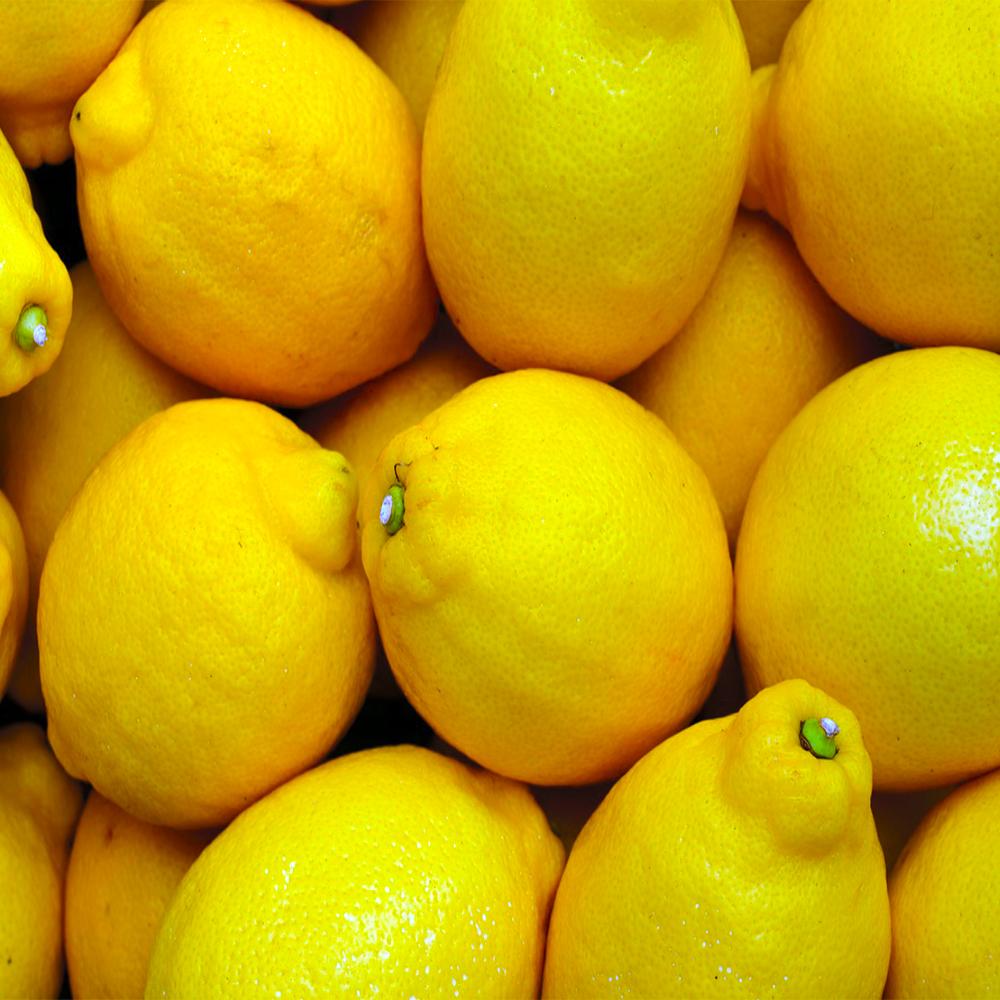 fruteria Abascal Olmedo fruteria mercado de san Fernando frutas de mayo mercado de san Fernando frutas de temporada mercado de san Fernando limones mercado de san Fernando