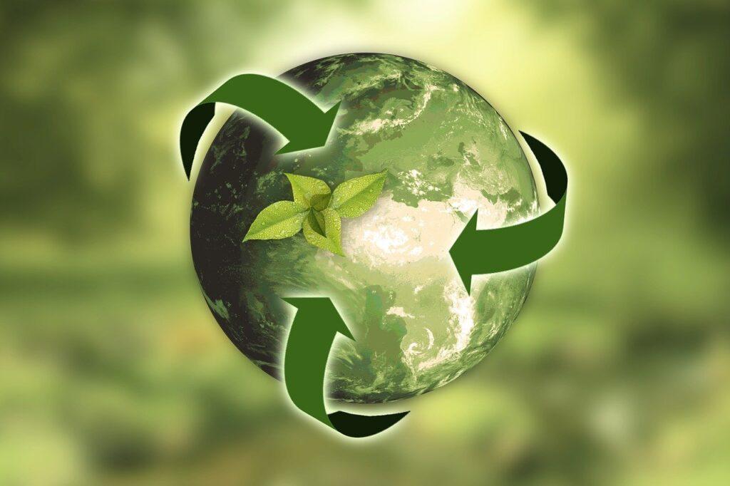 mercado de san fernando cajas delivery cajas recicladas delivery mercado de abastos reciclaje mercado de abastos bolsas material reciclado